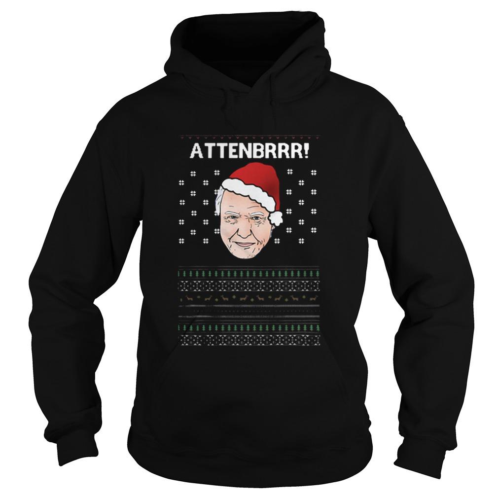 David Attenborough Attenbrrr ugly christmas  Hoodie