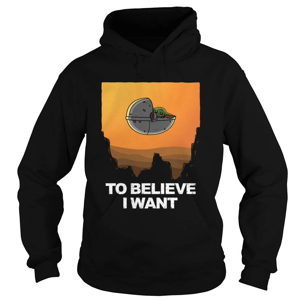 To Believe I Want  Hoodie