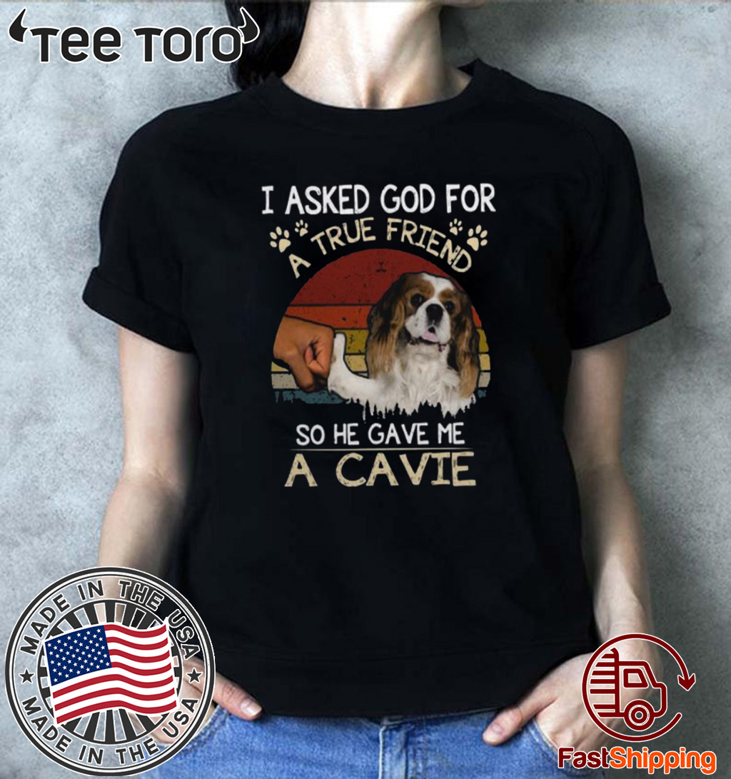 I Asked God For A True Friend So He Gave Me A Cavie Dog Vintage 2020 T-Shirt