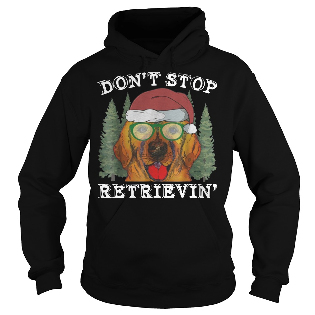 Don't Stop Golden Retriever Christmas Hoodie