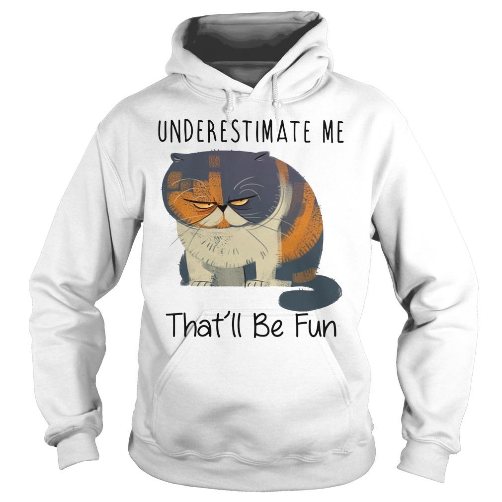 Grumpy cat underestimate me that'll be fun Hoodie