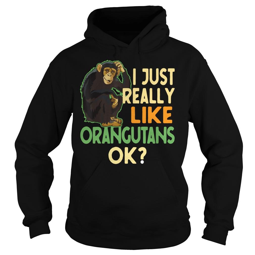 I just really like Orangutans ok Hoodie