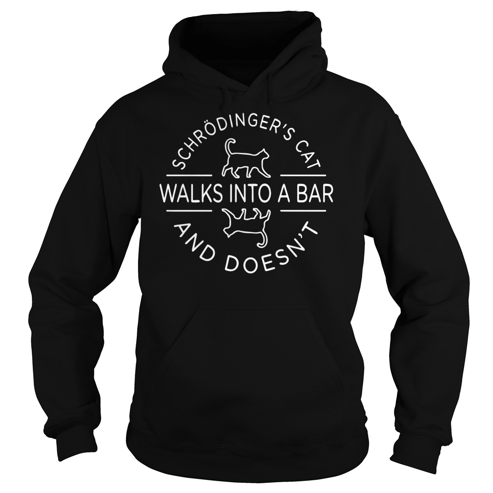 Schrodinger's cat walks into a bar and doesn't Hoodie