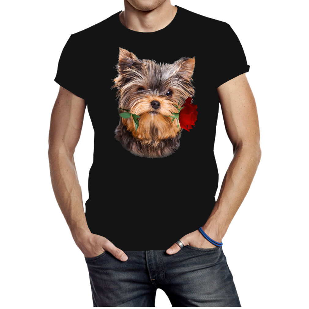 Yorkshire Terrier with rose branch shirt